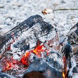 Marshmallows sticked on a twig, being toasted Stock Photography