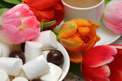 Marshmallows with tulips. Spring picnic with tulips and marshmallows Shallow DOF royalty free stock image