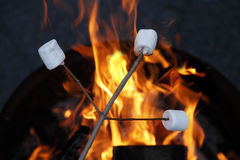 Marshmallows003 Images libres de droits