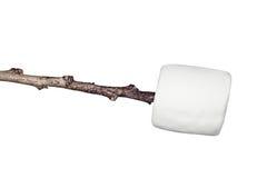 marshmallowstick Royaltyfria Bilder