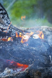 Marshmellows on a steel rod roasting over an open fire. Marshmallows roasting over an open fire Royalty Free Stock Image