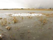 Marshside RSPB Reserve Stock Images