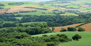 Marshwood Vale. Beautiful farmland landscape in Marshwood Vale near Morcombelake in Dorset, England Stock Image