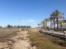 Marshy krajobraz i miastowy deptak Obraz Stock