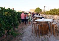MARSOVIN WINEYARD - Marsaxlokk, Μάλτα - 12 Αυγούστου 2017: Δοκιμή κρασιού σε Marsovin wineyard σε Marsaxlokk, Μάλτα Στοκ Εικόνες