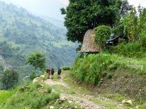 Marsyangdi river valley near Bahundanda village - Nepal. Annapurna Circuit trek in Nepal royalty free stock images