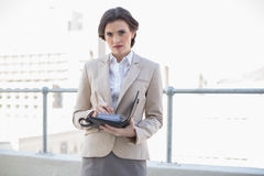 Marszczyć brwi eleganckiego brown z włosami bizneswomanu sprawdza jej agendę Obraz Stock
