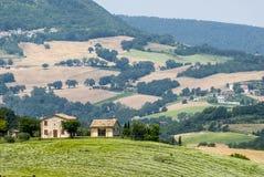 Marszu krajobraz Zdjęcie Royalty Free