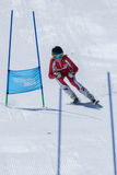 Marta Carvalho during the Ski National Championships Royalty Free Stock Photos