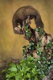 Marta de pino Fotos de archivo