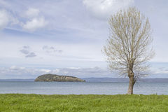 Marta and lake Bolsena Stock Photos