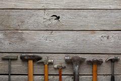 Marteaux sur le fond en bois photos libres de droits