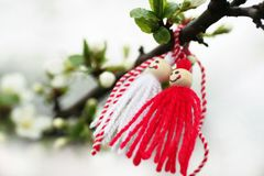 Martenica on a blossoming apple tree. Folk, Bulgarian, white - red Martenica Baba Marta on a blooming apple tree, Margeritta royalty free stock photography