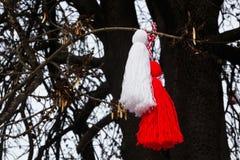 Martenitsa búlgaro en un árbol Fotografía de archivo