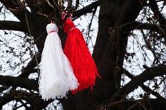 Martenitsa búlgaro en un árbol Imagen de archivo