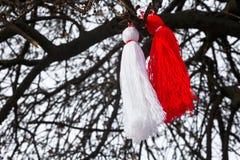 Martenitsa búlgaro en un árbol Fotos de archivo