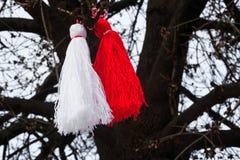 Martenitsa búlgaro en un árbol Imagen de archivo libre de regalías