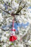 Martenitsa búlgaro tradicional en un árbol floreciente de la primavera Fotos de archivo