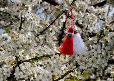 Martenitsa bulgare sur l'arbre de fleur Photographie stock