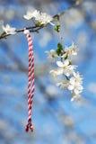 Martenitsa Bulgarian tradition. Bulgarian traditional custom spring sign Martenitsa on blosson tree branch against blue sky Royalty Free Stock Photos