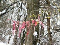 Martenitsa na kwitnącym drzewie w zimie, Bułgaria obraz stock