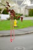 Martenitsa's rope Stock Image