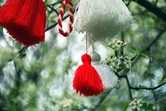 Martenitza su un albero Fotografia Stock