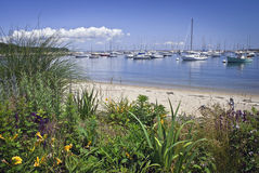 Martha's Vineyard de vue de port maritime Photo stock