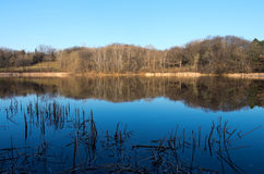 Marthaler Park and Pond Spring Horizon Stock Image