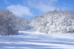 Marthaler Park Snowy Hills Royalty Free Stock Photography