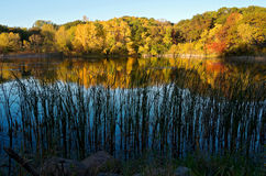 Marthaler Pond Autumn Reflections Royalty Free Stock Images