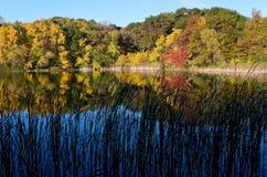 Marthalervijver Autumn Morning Royalty-vrije Stock Fotografie