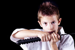 Martial art Royalty Free Stock Images