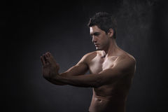 Martial art Royalty Free Stock Photo