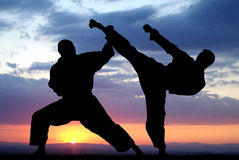 Martial art Stock Image