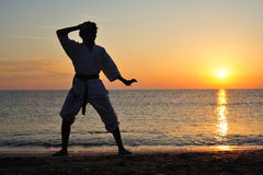 Martial art Stock Images
