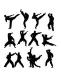 Martial Art Action Silhouettes Stock Photography