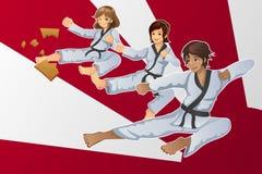 Martial Art Banner Royalty Free Stock Photos