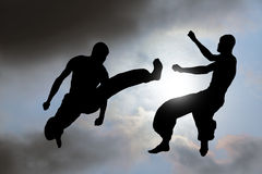 Martial Art Combat Background Royalty Free Stock Image