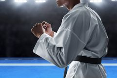 Martial art fighter ready to fight stock photos