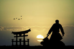 Martial art. Illustration of Ju jitsu at sunset Stock Image