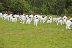 Martial Art Kids Stock Image