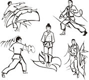Martial art lessons Royalty Free Stock Photo