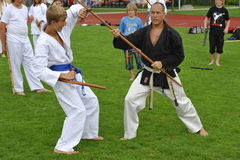 Martial Art Master Benj Lee with Bo and Tonfa Stock Photography