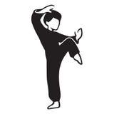 Martial Art Master Stock Image