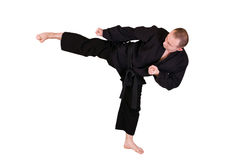 Martial art side kick Royalty Free Stock Image