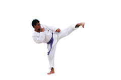 Martial art side kick Royalty Free Stock Images