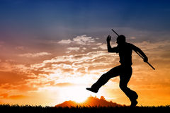Martial art silhouette at sunset Royalty Free Stock Image