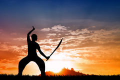 Martial art silhouette at sunset Stock Images