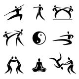 Martial art sport icons. Simple Sport Pictogram  Asian Martial Arts Icons  Vector illustration Royalty Free Stock Images